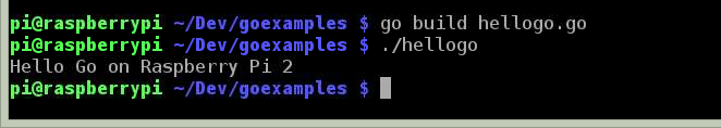 Go on a Raspberry Pi