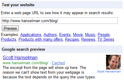 My site as seen by the Google Rich Snippets Testing Tool