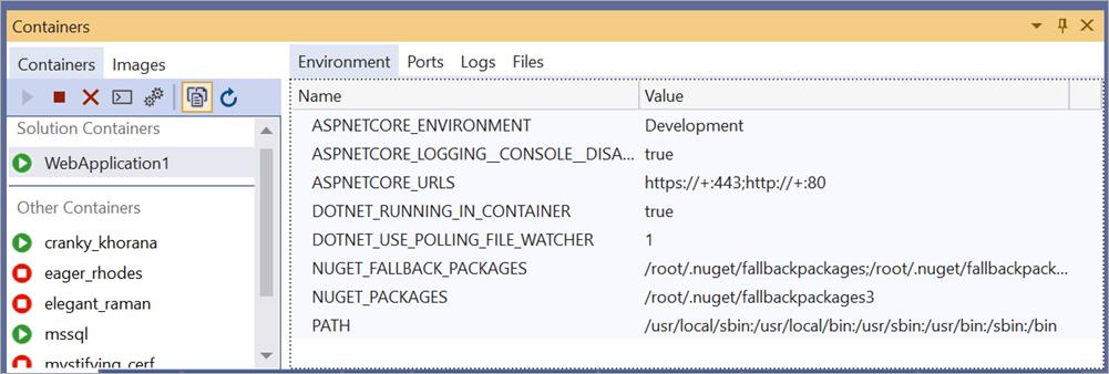 Docker Environment Variables