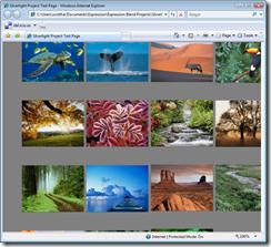 Silverlight Project Test Page - Windows Internet Explorer (4)